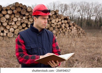 Young lumber engineer standing with notebook in front of cut trunk stock