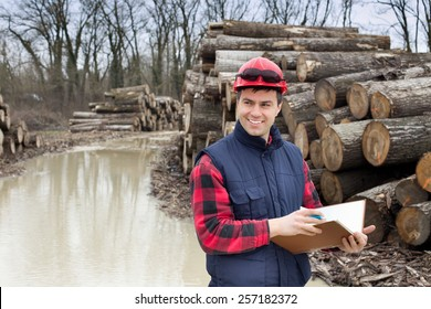 Young lumber engineer standing with notebook beside cut trunk stock