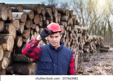 Young lumberjack holding his helmet with hand in front of cut trunks in forest