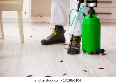 Young male contractor doing pest control at home