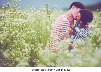 young male couple kissing in daisy flower, on summer field. Defocused