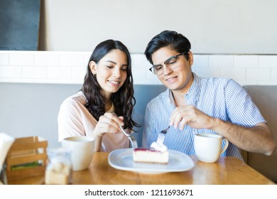 Young male and female lovers enjoying cheesecake on their first date in coffeehouse