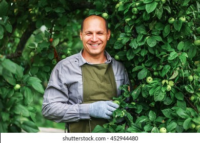 Young male gardener working in the garden.