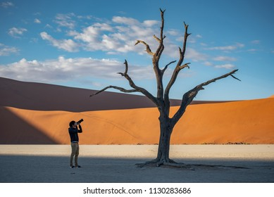Young male photographer and traveler taking photo of dead tree in deadvlei (Sossusvlei) during sunrise, famous natural landmark in Namib desert of Namibia, Africa
