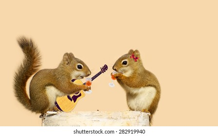 A young male squirrel holding an acoustic guitar while sipping liqueur with his sweetheart.