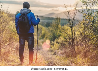 Young male tourist with the backpack and wooden stick standing at the forest glade, looking in the sky and enjoying beautiful sunset. Copy space for your text.
