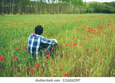 Young man alone in a field of wheat and poppies