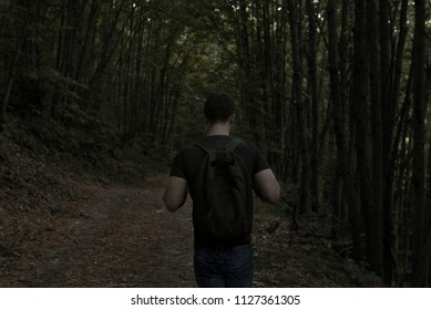 Young man with a backpack exploring a dark forest