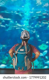 A young man with backpack looking at fish in a tank at the aquarium.