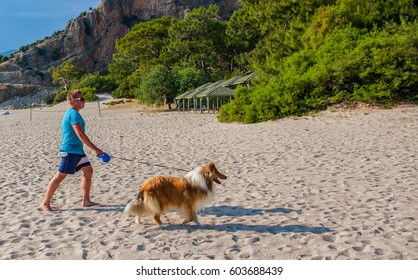 Young man in a blue t-shirt and shorts walking with his rough collie on a leash on a beautiful beach with trees and rocks on a sunny summer day on mediterranean coast of Turkey