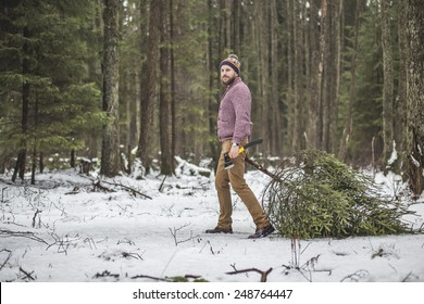 Young man is caryying christmas tree in the wood