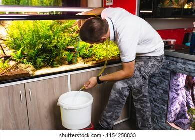 Young man changing water in aquarium using siphon.
