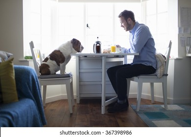 Young man eating breakfast with dog