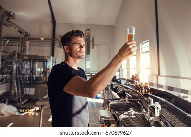 Young man examining the quality of craft beer at brewery. Male inspector working at alcohol manufacturing factory checking the beer.
