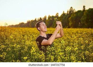 A young man farmer or agronomist examines the quality of rapeseed oil on a rape field. Agribusiness concept