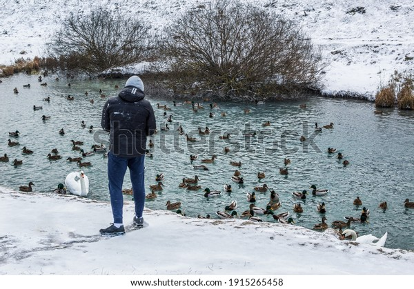 young-man-feeding-mallard-ducks-600w-191