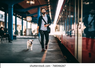 Young man going on vacation with train. Handsome guy walkiing with his bulldog at train station.