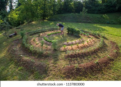 Young man with hat Working in a Home Grown Vegetable Garden
