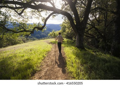 Young man hiking with walking stick in Sonoma County, California
