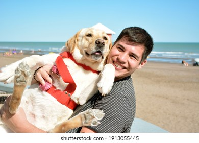 young man and his labrador retriever dog enjoying in the beach. Best friends relationship. Pet life.