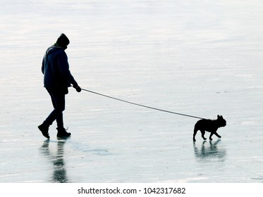 Young man with his pug dog walking on frozen lake together. Leisure activities and sports in wintertime.
