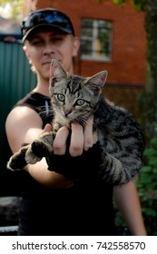 A young man is holding a gray, handsome kitten
