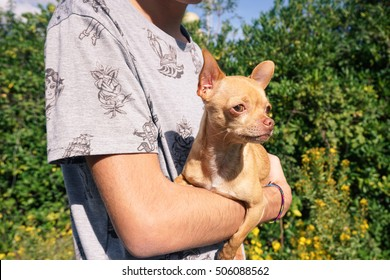 Young man holding his dog pet- Focus on dog's face