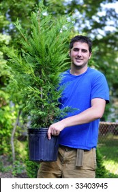 young man holding a Leyland Cypress tree in a pot