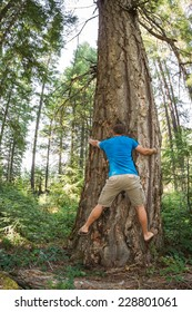 young man hugging a very large Douglas fur tree in the Oregon  forest