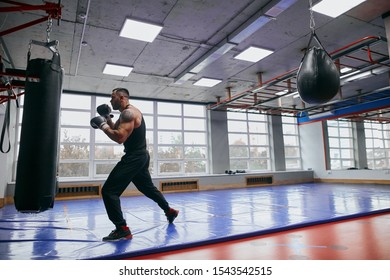 young man is keen on martial art, full length side view photo. copy space, powerful , shattering blow, stike , kick, full length side view photo. copy space