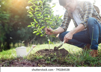 Young man kneeling during planting a tree, profession concept