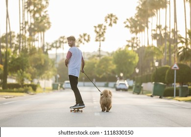 young man looking back and smile. Riding on skateboard with puppy Chow Chow on a street with palm trees in the evening with the beautiful sunset light