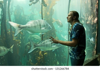 Young man looks at fish tank. Shot in Cape Town, South Africa.
