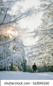 Young man is a magical winter forest hiking. Adventures outdoors that motivate to move