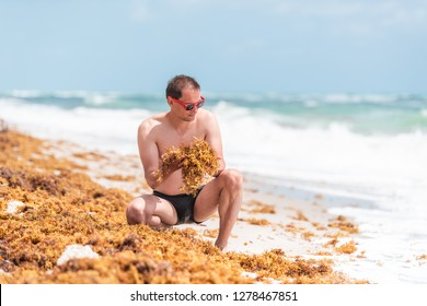 Young man on beach during sunny day with red sunglasses in Miami, Florida with blue sky background, sitting squatting crouching holding yellow sargassum seaweed