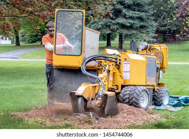 A young man operates a stump grinder, a machine that grinds down a tree stump into fine mulch