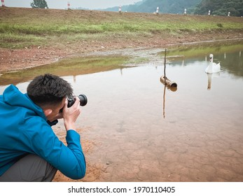 Young man photographer take a shot to the white swan in the lake , activity , freedom and recreation concepts