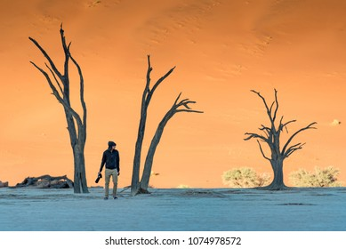 Young man photographer and traveler standing between dead trees in deadvlei (Sossusvlei) during sunrise, famous natural landmark in Namib desert of Namibia, Africa