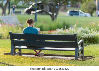 A young man is reading a book on a bench