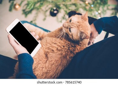 Young man relaxing at home with ginger cat and smartphone in his