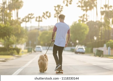 young man riding on skateboard with puppy Chow Chow on a street with palm trees in the evening with the beautiful sunset light