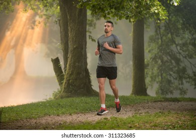 Young Man Running In Wooded Forest Area - Training And Exercising For Trail Run Marathon Endurance - Fitness Healthy Lifestyle Concept