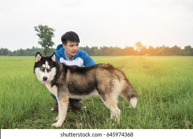 Young man with a Siberian dog in a meadow.