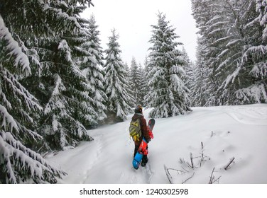 Young man Snowboarder walking through the forest carrying snowboards. Powder Day. Walking throw deep snow. snowboarder on winter holiday in the winter forest.