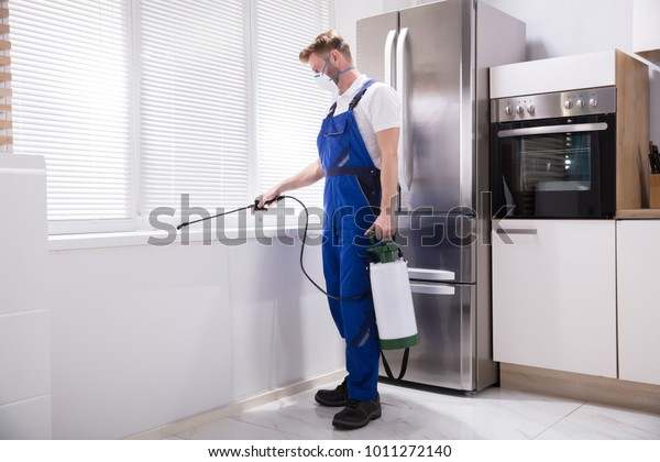 Young Man Spraying Pesticide On Windowsill In Kitchen