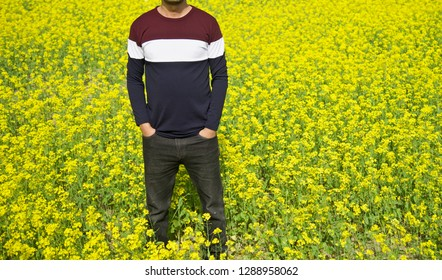 Young man standing around a mustard crops field