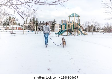 A young man taking his dog for a walk, running towards the swings excitedly in the neighborhood park.