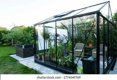 Young man tending to herbs and vegetable plants in a beautiful greenhouse