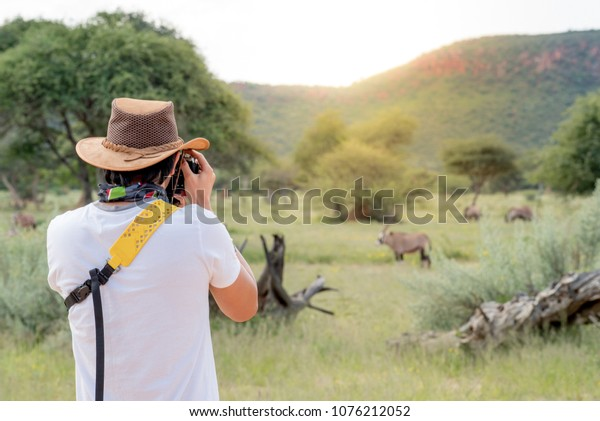 Young man traveler and photographer taking photo of Oryx, a type of wildlife animal in African safari. Wildlife photography concept