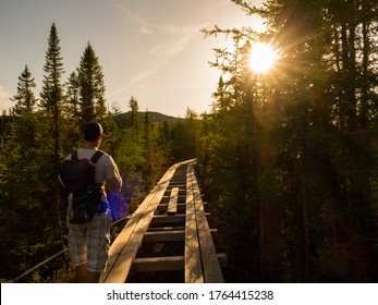 young-man-walking-on-wooden-260nw-176441